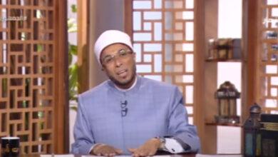 محمد أبو بكر